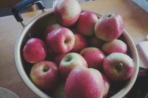 りんごジュースを作ったり