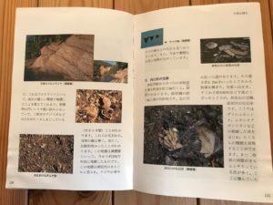 黒松内自然のガイドブック